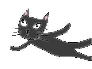 cat_black